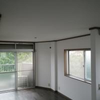 某マンション 内装リフォーム 天井・壁面クロス張替